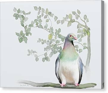 Wood Pigeon Canvas Print by Ivana Westin
