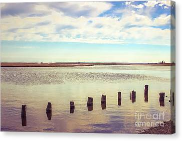 Canvas Print featuring the photograph Wood Pilings In Still Water by Colleen Kammerer