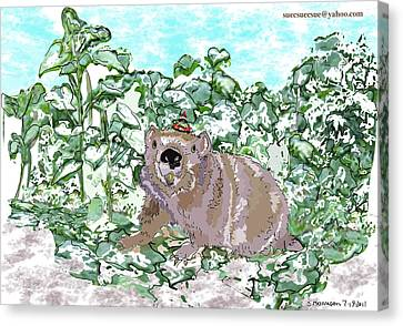 Woodchuck Chuck Canvas Print by Susie Morrison