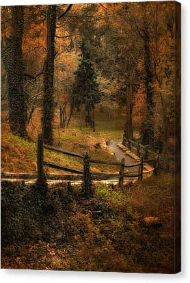 Wooded Path Canvas Print by Jessica Jenney