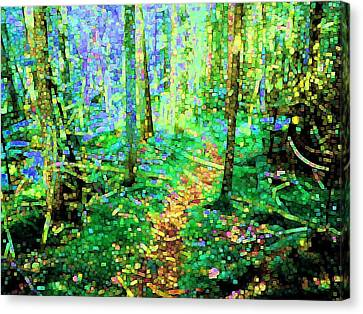 Wooded Trail Canvas Print by Dave Martsolf