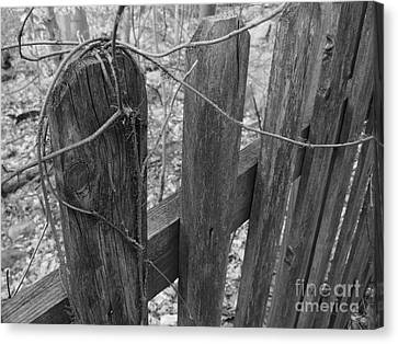 Wooden Fence Canvas Print by Jeff Breiman