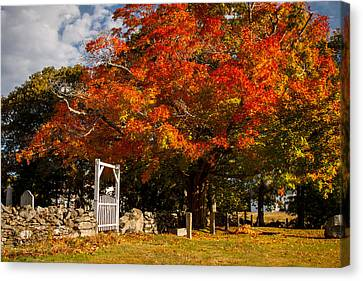 Wooden Gate In Rockwall Under Fall Foliage Canvas Print by Jeff Folger