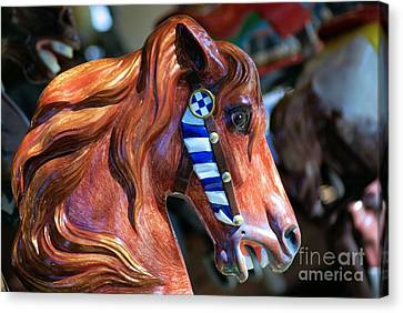 Wooden Horse Canvas Print by John S
