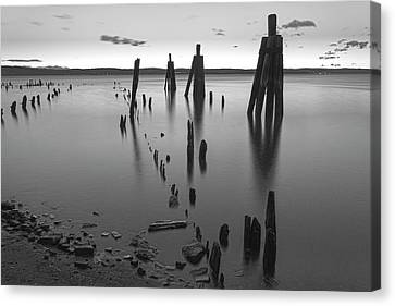 Wooden Soldiers Of The Hudson Monochrome Canvas Print