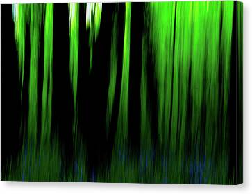 Woodland Abstract Iv Canvas Print