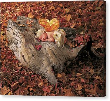 Angel Canvas Print - Woodland Fairy by Anne Geddes