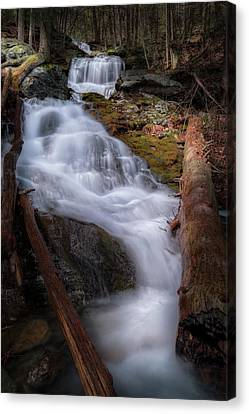 Canvas Print featuring the photograph Woodland Falls 2017 by Bill Wakeley