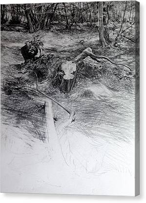 Canvas Print featuring the drawing Woodland by Harry Robertson