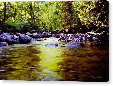 Woodland Pool Canvas Print by Frank Wilson