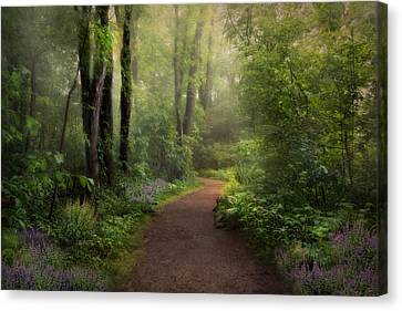Woodland Spring Canvas Print by Robin-Lee Vieira
