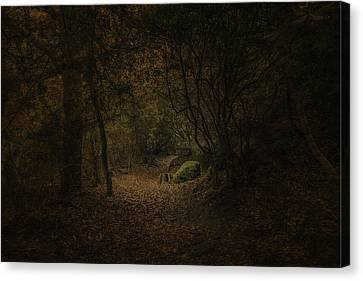 Canvas Print featuring the photograph Woodland Walk by Ryan Photography