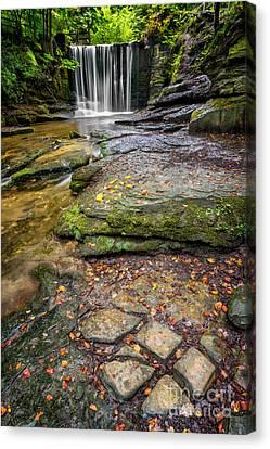 Woodland Waterfall Canvas Print