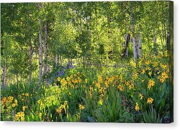 Canvas Print featuring the photograph Woodland Wildflowers by Tim Reaves