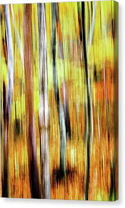 Woods A Blaze 4 Canvas Print by Keith Bowen