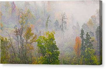 Canvas Print featuring the photograph Woods From Afar by Wanda Krack