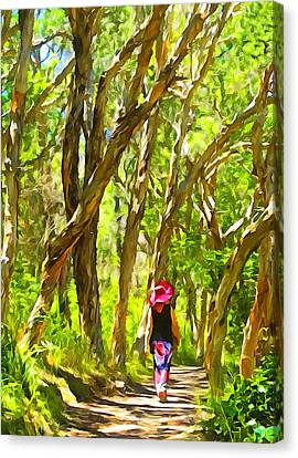 Woods Walk Canvas Print by Dennis Cox WorldViews