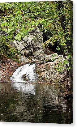 Canvas Print featuring the photograph Woodsy Flow by Kristin Elmquist