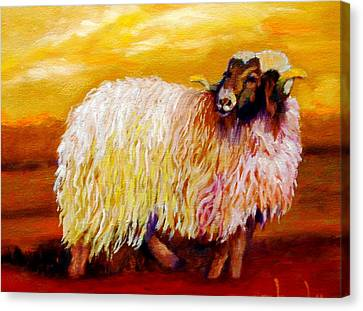 Woolly Canvas Print by Marie Hamby