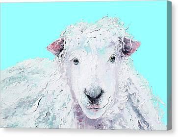 Woolly Sheep  Canvas Print by Jan Matson