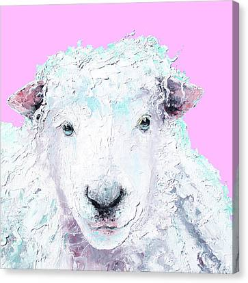 Woolly Sheep On Pink Canvas Print by Jan Matson