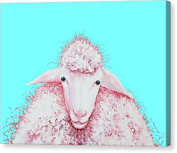 Woolly Sheep On Turquoise Canvas Print by Jan Matson