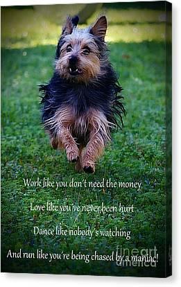Doggy Cards Canvas Print - Words To Live By by Clare Bevan