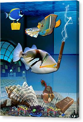 Order, Order, Order, Going Shopping Saltwater Triggerfish Canvas Print