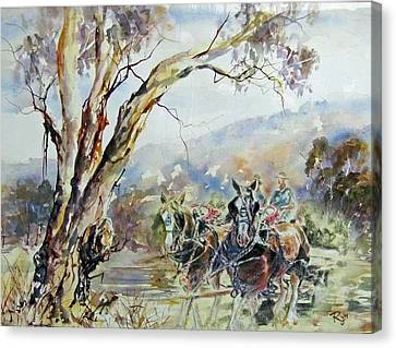 Working Clydesdale Pair, Australian Landscape. Canvas Print