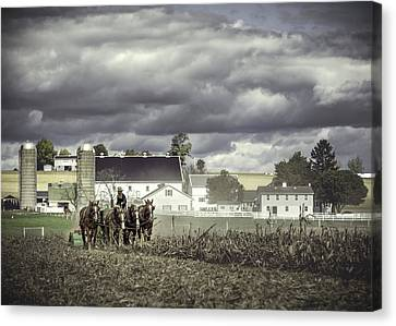 Working The Fields Canvas Print by Eduard Moldoveanu