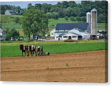 Working The Fields Canvas Print by Tricia Marchlik