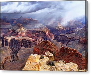 World Of Wonders Canvas Print by Art OLena