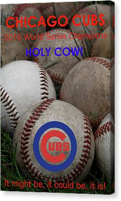 World Series Champions - Chicago Cubs Canvas Print by David Patterson