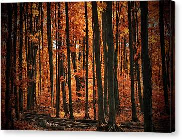 Canvas Print - World With Octobers by Andrea Kollo