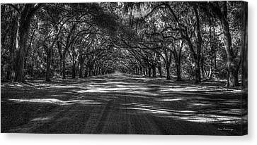 Wormsloe Plantation 2 Live Oak Avenue Art Canvas Print by Reid Callaway