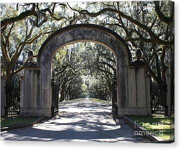 Pineapple Canvas Print - Wormsloe Plantation Gate by Carol Groenen
