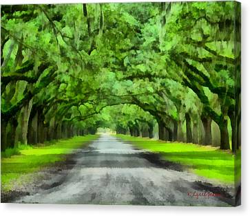 Wormsloe Plantation Canvas Print