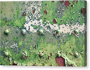 Worn And Weathered Canvas Print by Tim Gainey