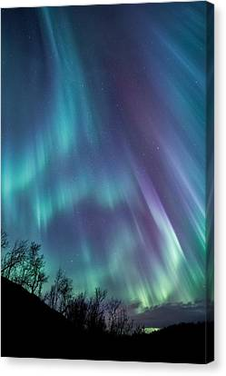 Northern Canvas Print - Worth The Wait by Tor-Ivar Naess