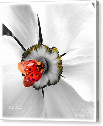 Wow Ladybug Is Hot Today Canvas Print