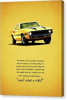 Wow What A Ride Canvas Print