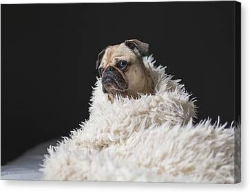 Wrapped Canvas Print by Billy Soden