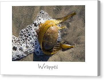 Wrapped Canvas Print by Peter Tellone