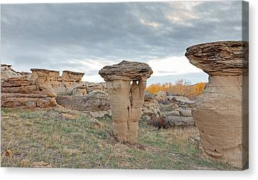 Canvas Print featuring the photograph Writing On Stone Park by Fran Riley