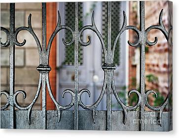 Wrought Iron Canvas Print by Elena Elisseeva