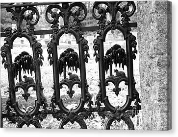 Wrought Iron Gate -west Epping Nh Usa Canvas Print by Erin Paul Donovan