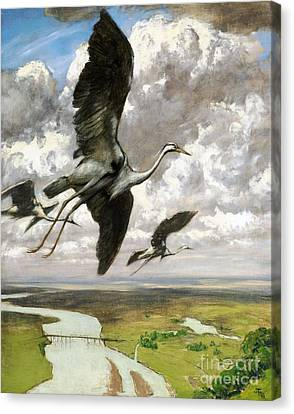 Wundervogel Canvas Print by Pg Reproductions