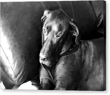 Wyatt In The Recliner Canvas Print