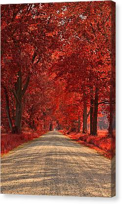 Wye Island Ruby Road Canvas Print