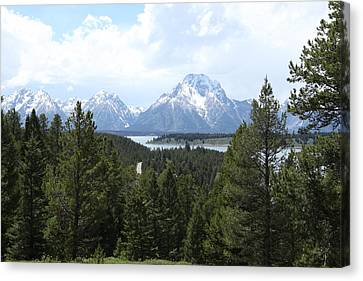 Wyoming 6490 Canvas Print by Michael Fryd